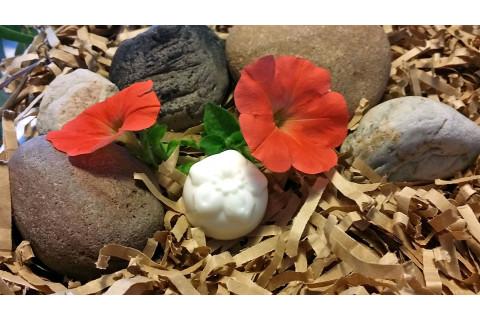 White-Miniature-Flower